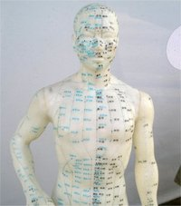 acupuncture body