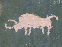 Bison Petroglyph