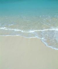 Bahamas Exuma Beach & Water in