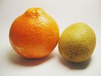 an orange and a kiwi