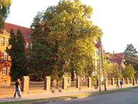 high school in Rogozno 2