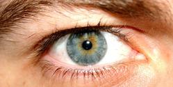 Blue Afraid Eye