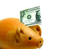 Piggy Bank - Dollar