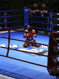 muai thai fighting 1
