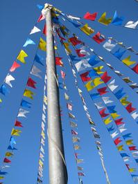 june parties flags 1