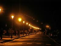 Some lampions