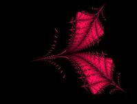 fractal creation 5