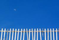 moon yard