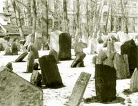 Prague cemetery