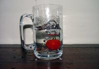 tomato plunge series 5