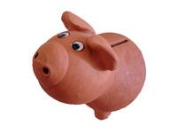 Economic pig