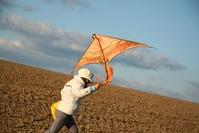 Kite in acre 4
