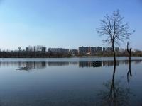 spring water 1