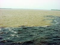 border Rio Grande and Rio Negr