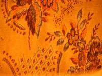 Orange texture