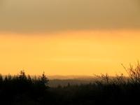 Evening orange sunset