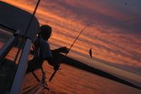 Sunsets 5