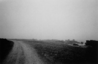 Gotland landscape