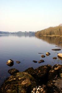 Lakelands 4