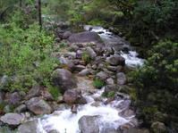 Small Stream 5
