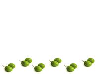 Olive border