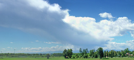 Green Landscape in Lombardia