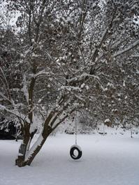 Tire Swing in Winter