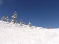 Amazing Skiing 2