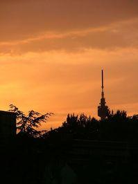 Sun dawn 05