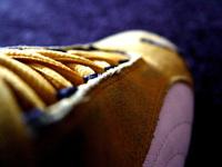 Sneaker close-up