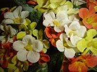 False Flowers 5