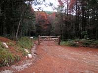 Paradise's Gate