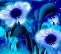 blurry flowers
