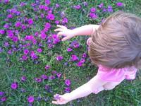 Sofia colhendo flores