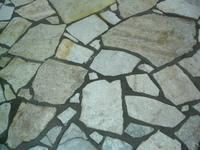 tiles wild