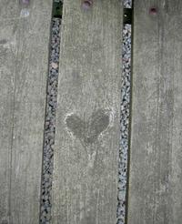 Heart in wood