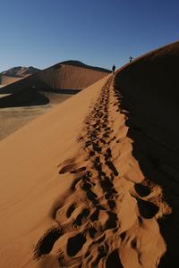 Namib desert, Namibia - Dune 45