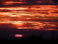 Sunset Over Ashdown Forest