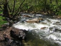 Aggitis River