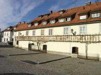 Oldest vine trellis in Europe