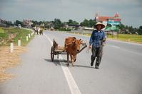 Primitive Transportation