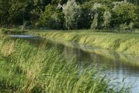 the purmer, polder landscape. Holland