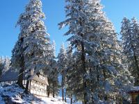 Winterlandscape in Romanian Mountains