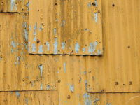 Yellow Shack Wall
