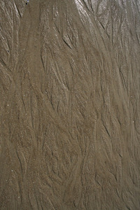 Sand delta