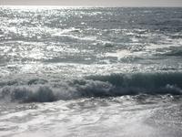Coast - Monterey