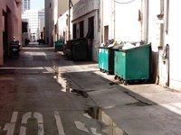 Dumpster Alley