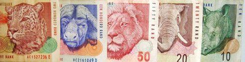 SA Money 1