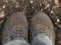 grainy shoes