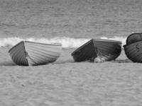 Row boats on the shoreline